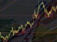 Euro'da son durum ne? 2020 Ocak ayından buyana Euro'daki değişim…