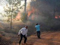 Adrasan'da orman yangını
