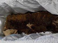 İskoçya'da annenin 45 yıl önce ölen bebeğinin mezarı boş çıktı