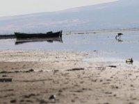 Nilüferleriyle ünlü Işıklı Gölü'nde tehlike çanları: Suyu 300 metre çekildi