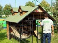 Bolu'da, 50 noktaya kedi ve köpek evleri yerleştirildi