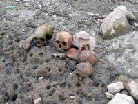 Çanakkale'de gölet havzasında 4 kafatası ve kemikler bulundu