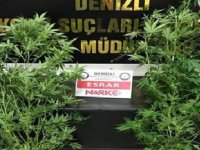Denizli'de uyuşturucu ticaretine 16 tutuklama