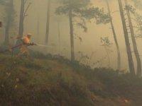 Kastamonu'da orman yangınına müdahale sürüyor