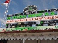Türkiye'nin en büyük tarım marketi, Reyhanlı'da hizmete girdi
