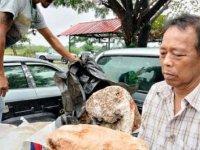 Tayland'da balıkçının 2.4 milyon pound değerindeki keşfi görenleri şaşırttı