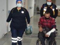 Kağıt toplarken, köpek saldırısında yaralandı