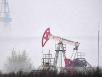Wood Mackenzie: Küresel petrol talebi 2021'de günlük 6,3 milyon varil artacak