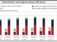 TCMB-Finansal kesim dışı net döviz açığı 157.57 milyar dolar