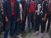 Afgan uyruklu 16 kaçak göçmen yakalandı