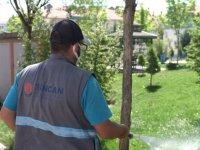 Sincan Belediyesi, engelli vatandaşlarına istihdam sağlıyor