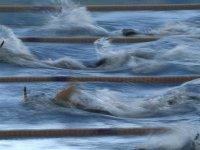 Paletli yüzmede Kaan Kahraman, dünya şampiyonu oldu