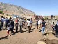 Derecik'te ahır yandı; 7 büyükbaş öldü