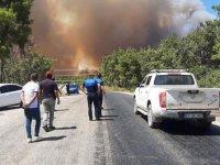 Antalya Manavgat'ta 2 farklı noktada yangın çıktı! Vatandaşlar seferber oldu