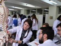 Ankara'daki Bulunan Üniversitelerin Tıp Fakültesi Taban Puanları