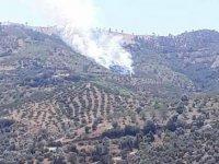 Kiraz'da orman yangını çıktı