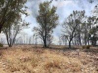 Balıkesir'in Dursunbey ilçesindeki yangın kontrol altına alındı