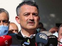 Bakan Pakdemirli: Karabük ve Adana Feke yangını kontrol altında