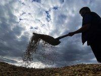 2 Milyon Çiftçiye 5 Milyar Ödeme Bekleniyor