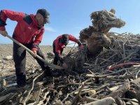 Bozkurt'ta kayıplara ulaşmak için çalışmalar tüm imkanlarla sürdürülüyor