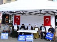 Muş'ta çocukları için HDP önünde eylem yapan aile sayısı 12'ye yükseldi