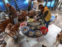 Hayvanlar İçin Şehirden Köye Taşındı
