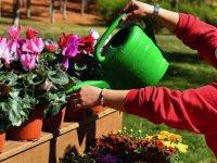 Anfa Bitki Evi Üçüncü Şubesini 30 Ağustos Zafer Parkı'nda Açtı