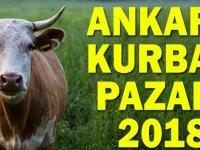 Ankara, Kurban Satış Pazarları ve Kesim Yerleri 2018 YENİ LİSTE!