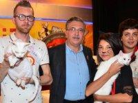 3. Uluslararası Pursaklar Kedi Güzellik Festivali Ne zaman? Ödüller ne?