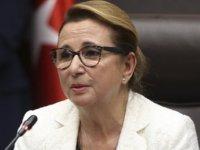 Ticaret Bakanı: Yüzde 300 zam yapan tespit ettik