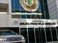 Ankara Orman İşletme Müdürlüğü danışmanlık hizmeti alacak
