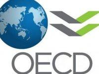 OECD'den Türkiye'ye kötü haber
