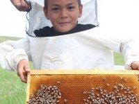 Arılar, bin çeşit çiçekten bin ton bal üretiyor