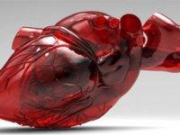 Türk bilim insanları kalp üretecek!