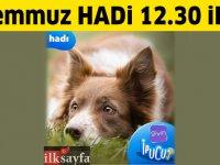17 Temmuz 12:30 HADİ ipucu: Sokak köpeklerinin günlük mama ihtiyacını karşılayan mobil uygulamanın adı nedir?