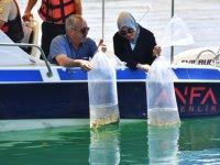 Ankara'daki göletler balıklandırıldı