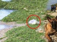Köpeğin ısrarlı havlaması dehşeti ortaya çıkardı