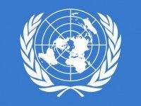 """BM duyurdu: """"Soykırım niyetiyle"""" yapıldı"""
