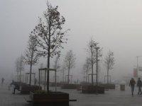 Meteoroloji yoğun yağış ve sis için uyardı