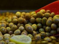 Zeytin ihracatında rekor kırıldı