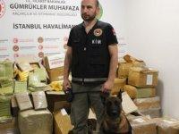 İstanbul Havalimanı'nda 1 ton 745 kilogram uyuşturucu ele geçirildi