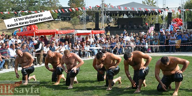 karapurcek-yagli-guresleri,-uluslararasi-kalecik-karasi-uzum-festivali,,.jpg
