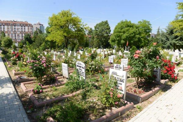 mezarliklar-hummali-calisma-11.jpg