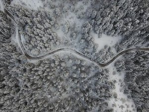 Kastamonu ormanlarında 'beyaz örtü'nün görsel şöleni