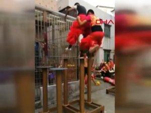 'Aslan dansı' provası sosyal medyada büyük ilgi çekti