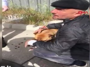 Tepki çeken olay: Köpeğini motosikletin arkasına bağlayarak sürükledi