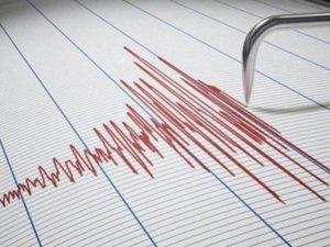 İzmir'de 4.8 büyüklüğündeki deprem anı kamerada! 8 Ağustos 2019