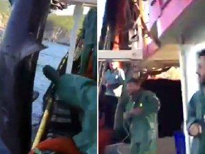 Köpek balığını tekmeleyip yumruklayan balıkçıya ceza