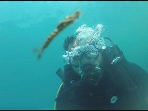 Van Gölü'nde yeni canlı türü kameralara yansıdı