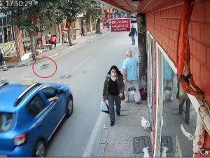 Bursa'da, taksi dolmuşun kediyi ezme anı kamerada